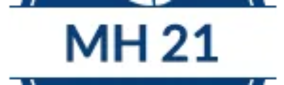 MH 2021 (Virtual Conference)
